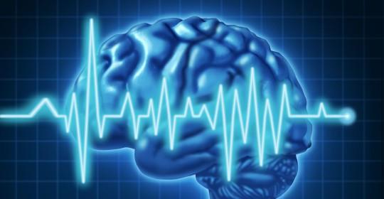 Программа по диагностике и профилактике сердечно-сосудистых заболеваний